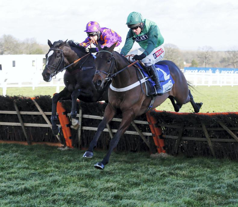 RORY DELARGY: Lexion can plough through mud to prove Sandown hero