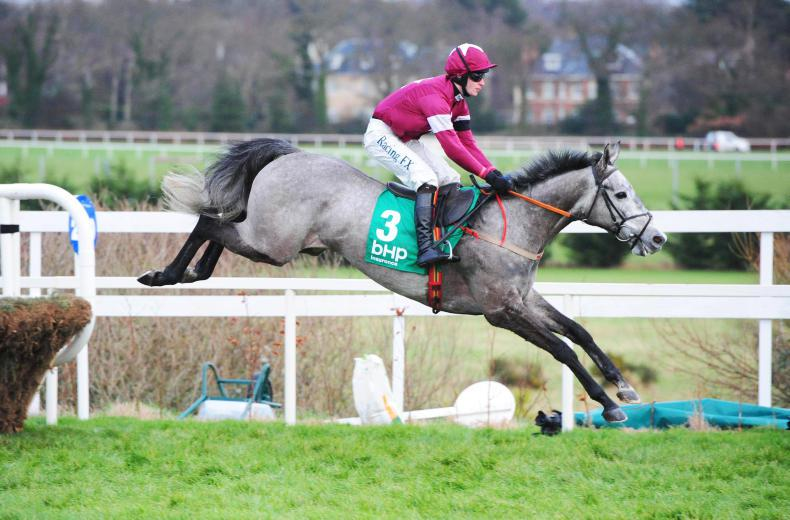 LEOPARDSTOWN SUNDAY: Petit Mouchoir enhances Champion Hurdle claims