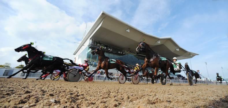 HANDS ON: Standardbred racing  - winner alright