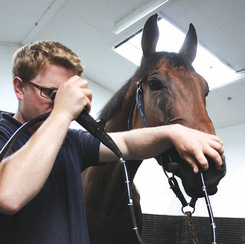 HANDS ON:  Bleeding in racehorses