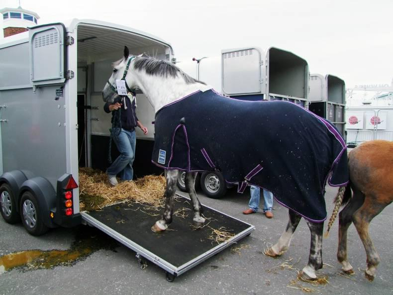 HANDS ON:  Travelling horses safely