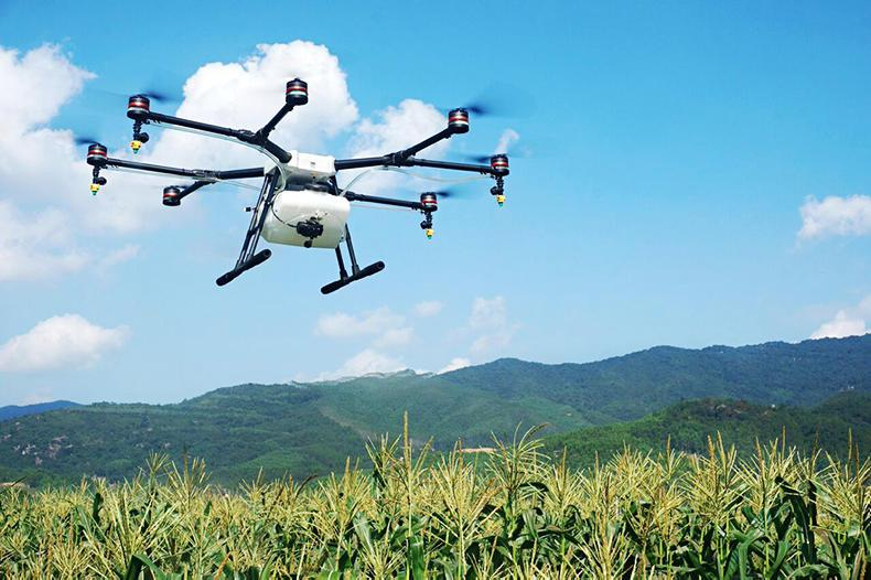 HORSE SENSE: Watch out for the drones