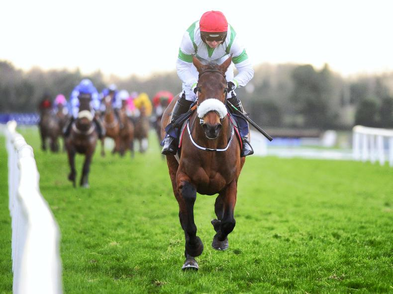 Could Fayonagh be another Solerina?