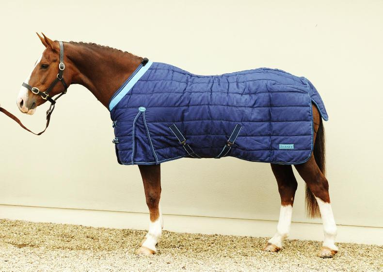 HORSE SENSE: A guide to rugs inside and out
