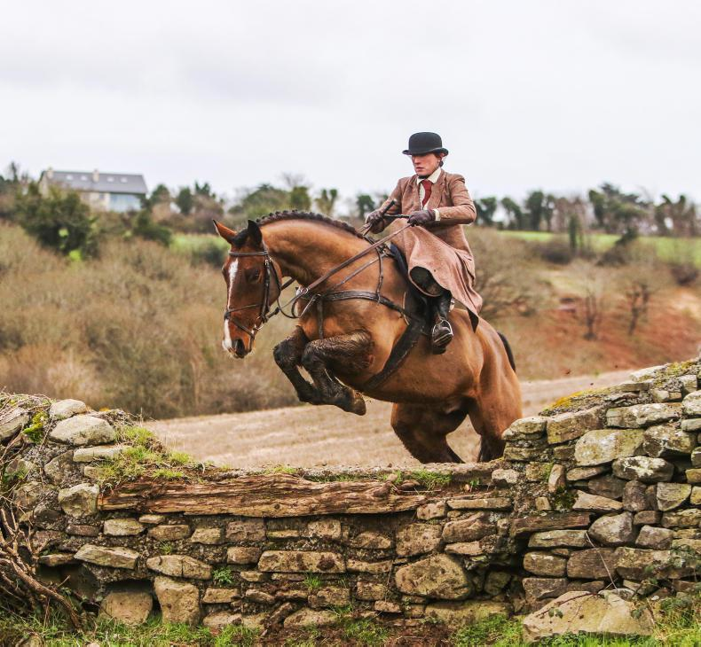 HORSE SENSE: What to look for in an Irish hunter