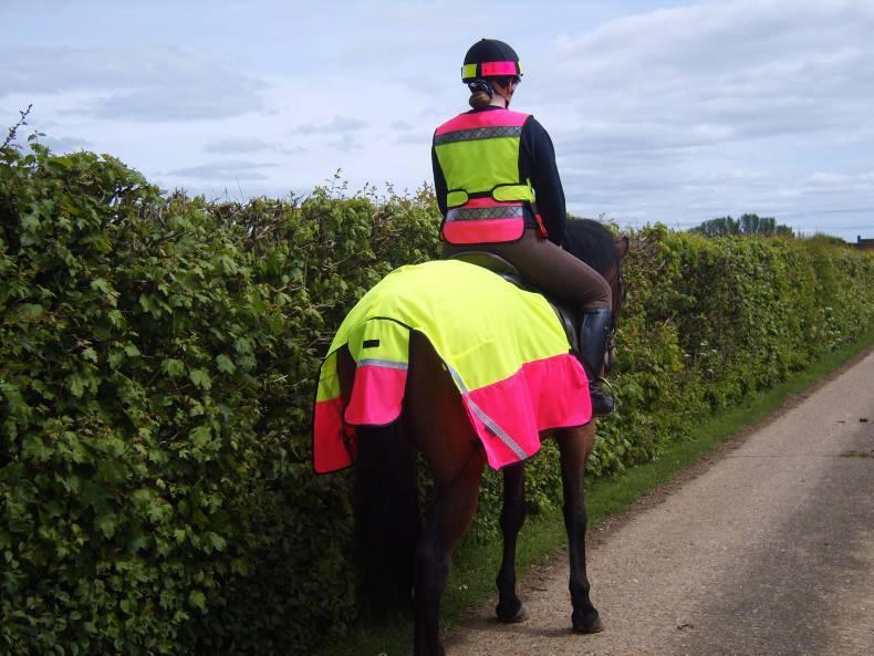 HORSE SENSE: Be safe on the roads