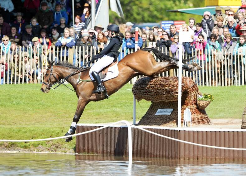 HORSE SENSE: Elizabeth Power talks about her experience eventing ex-racehorses