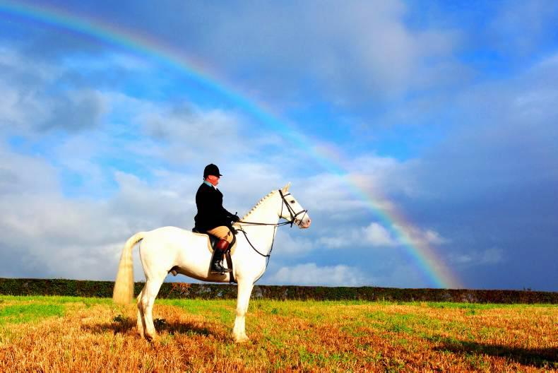 HORSE SENSE: Why hunting and farming go hand-in-hand