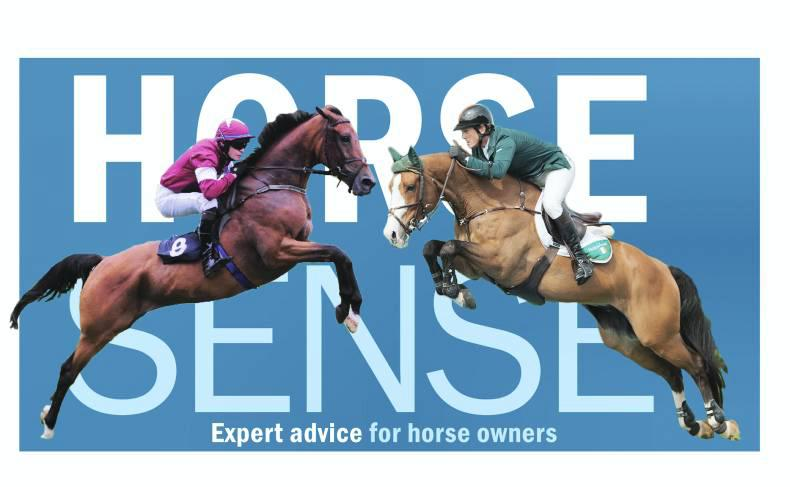 HORSE SENSE: Sales do's and don'ts