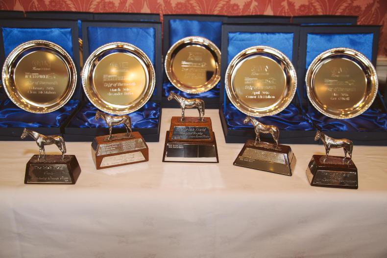 PICTURE DESK: IRISH FIELD HORSE WORLD AWARDS