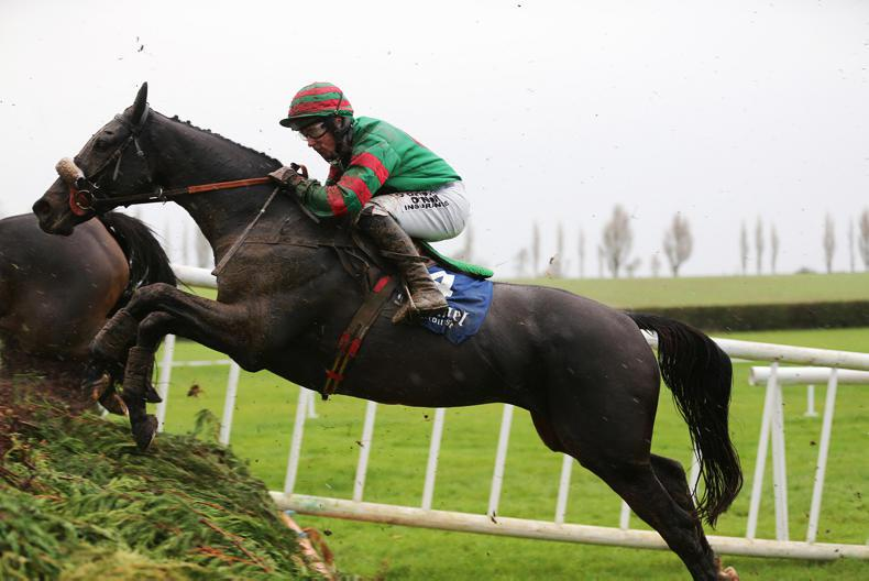 MARGIE MCLOONE: Mixed results for winning Kildorrery mares