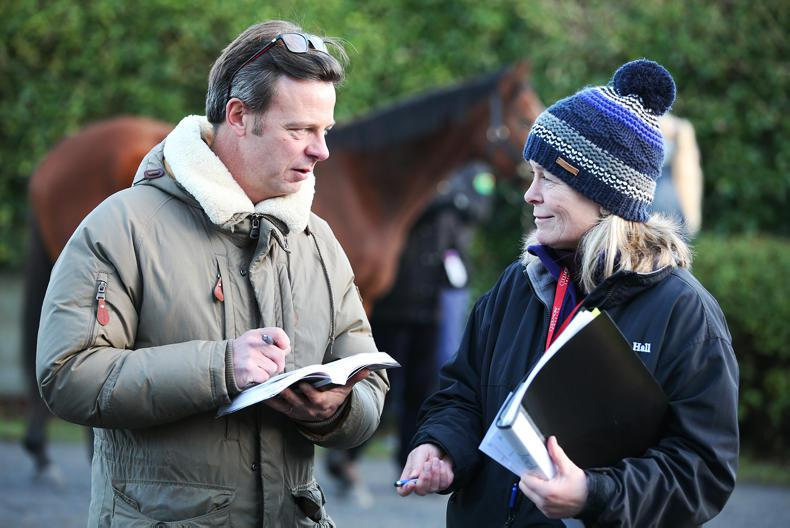 GOFFS FEBRUARY SALE: Yearling trade was mixed