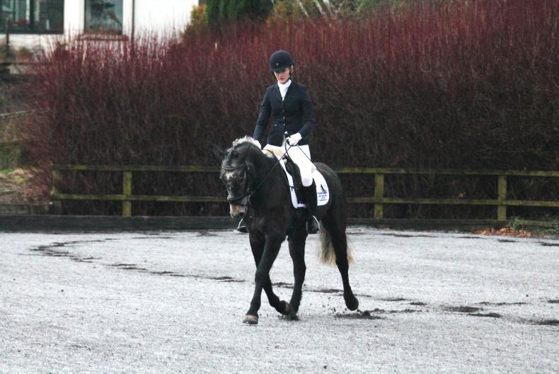 AROUND THE COUNTRY: Dressage riders out in force