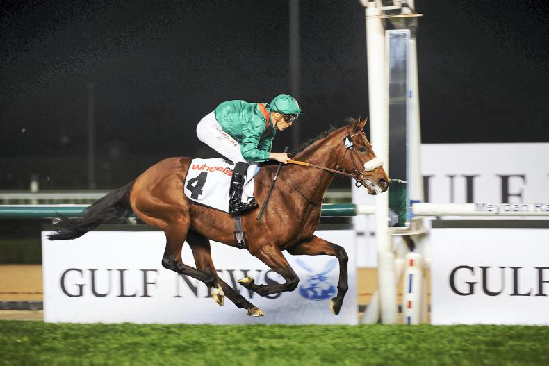 Zarak impresses on a night of records