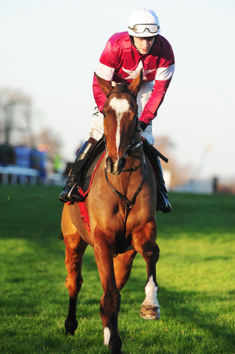 DONN MCCLEAN: Was the Grand National worth the weight?