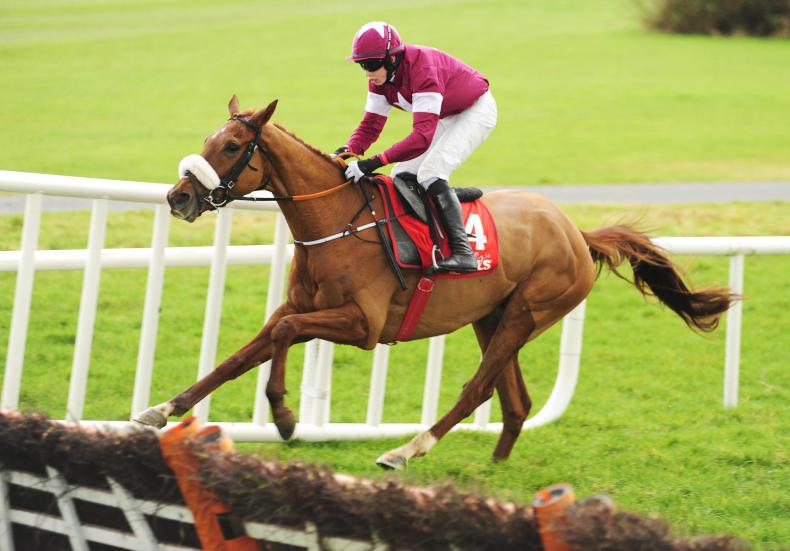 GOWRAN SATURDAY: Tombstone downs Jezki to make it a perfect return for Cooper