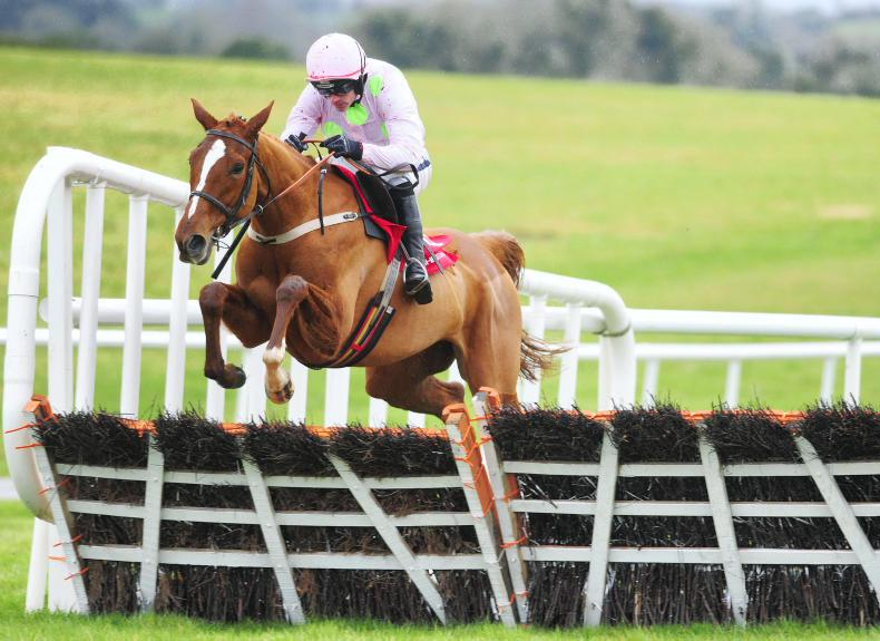 Willie Mullins to consider Champion Hurdle assault with Limini
