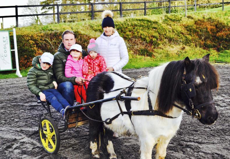 PONY TALES: Sheane family happy in harness