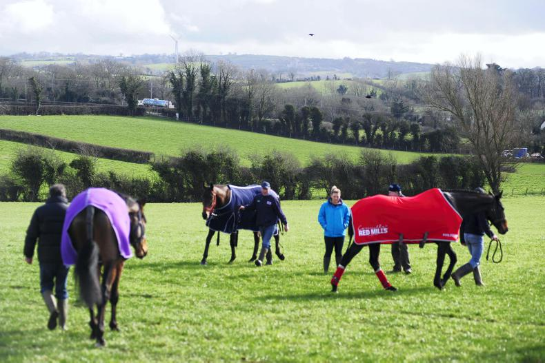 PICTURE DESK: Racing round-up