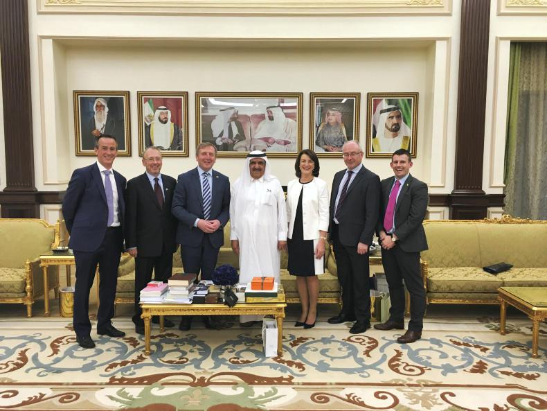 Irish delegation meet Sheikh Hamdan in Dubai