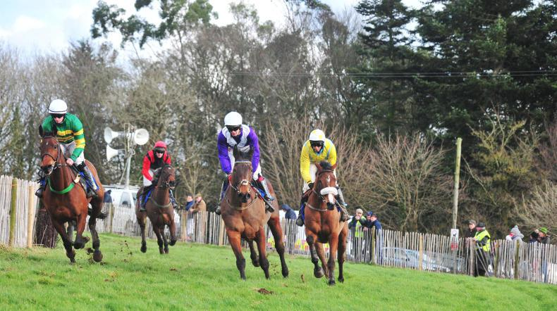 EOGHAIN WARD: Novice rider races need proper structure