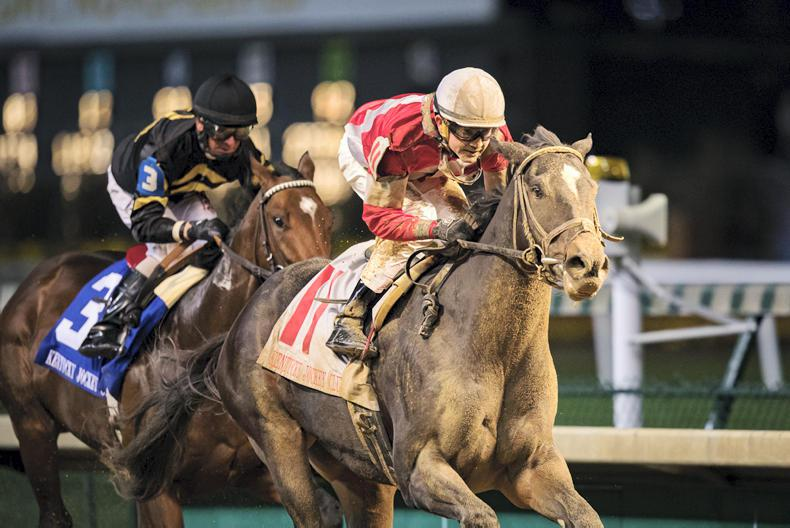 AMERICA: All to play for in Tampa Bay Derby following McCraken setback