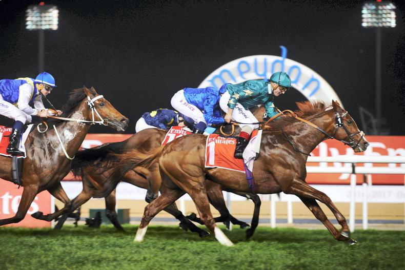 MEYDAN SUPER SATURDAY : Decorated Knight scales new heights