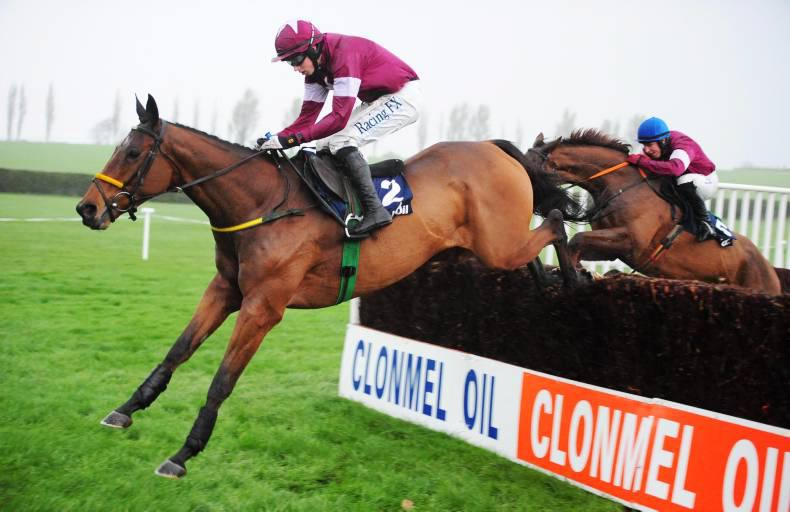 Road To Riches ruled out of Cheltenham Gold Cup