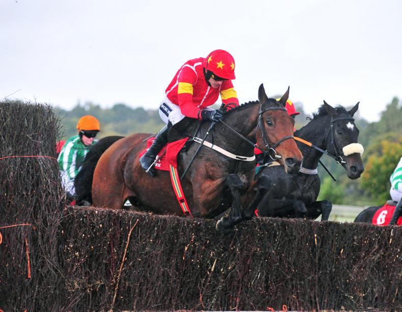 GOWRAN PARK SATURDAY: There's a New Kid In Town
