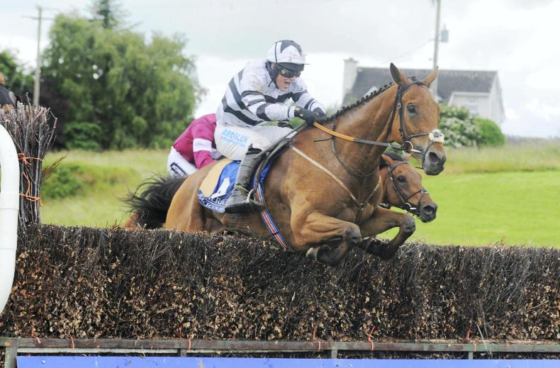 Ball D'Arc proves best in Gigginstown-dominated Naas feature