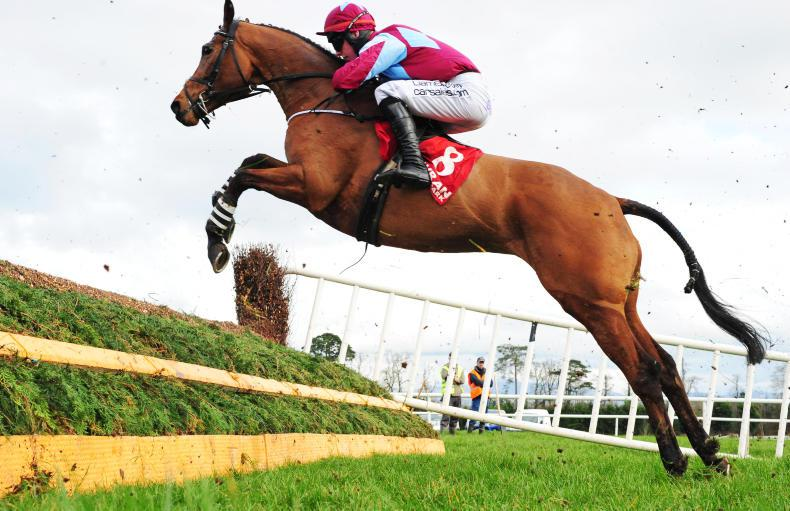 GOWRAN PARK SATURDAY: Kilcarry Bridge shows plenty of guts