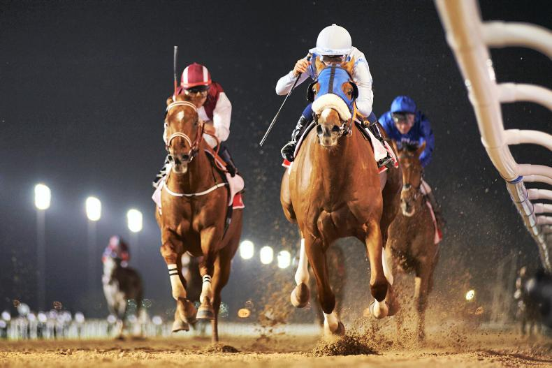 PARROT MOUTH: Can't get to Cheltenham, try Dubai