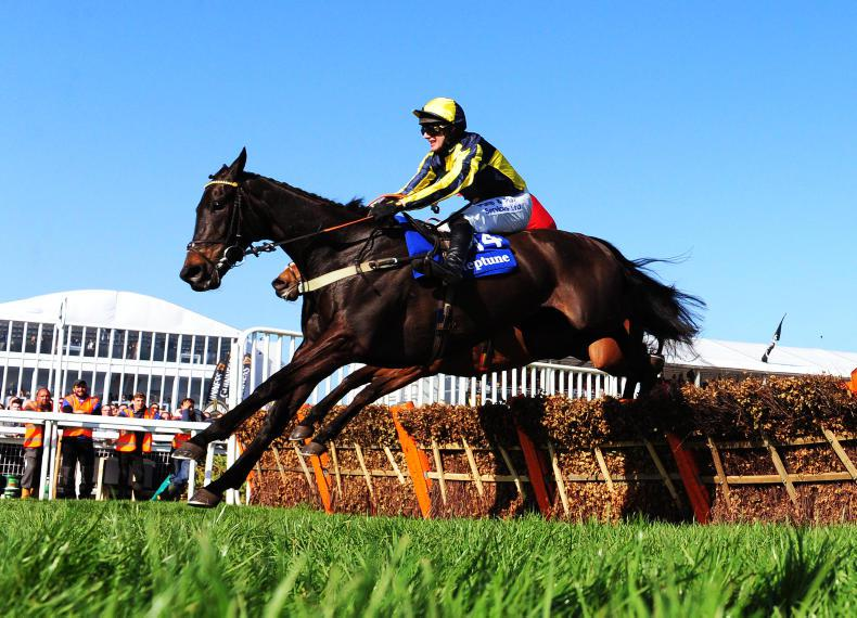 CHELTENHAM 2017: Pauling holds court in the Neptune