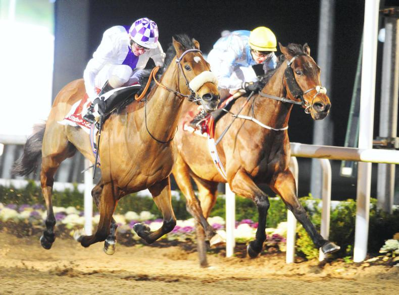 Promising Vincy features in Dundalk double for Halford and Foley