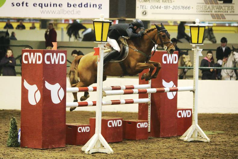 PONY SPRING TOUR:  Young guns in flying form at Cavan