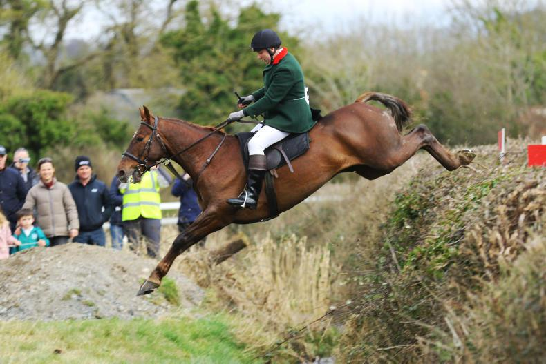 AROUND THE COUNTRY:  Search on for Ireland's finest hunters