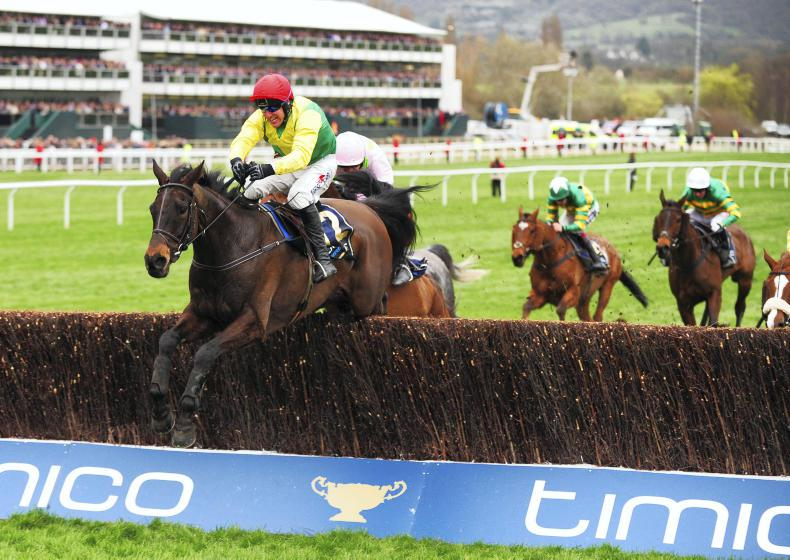 Sizing John heading for the Coral Cup in Punchestown