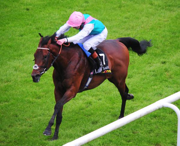 Kingman stars but with Ascot doubts