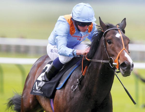 Toormore a threat to all in Guineas