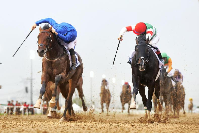 Eight up for Godolphin and bin Suroor
