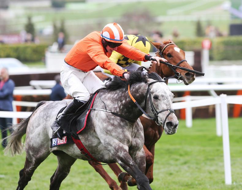 Cheltenham winner Labaik entered for Aintree sale