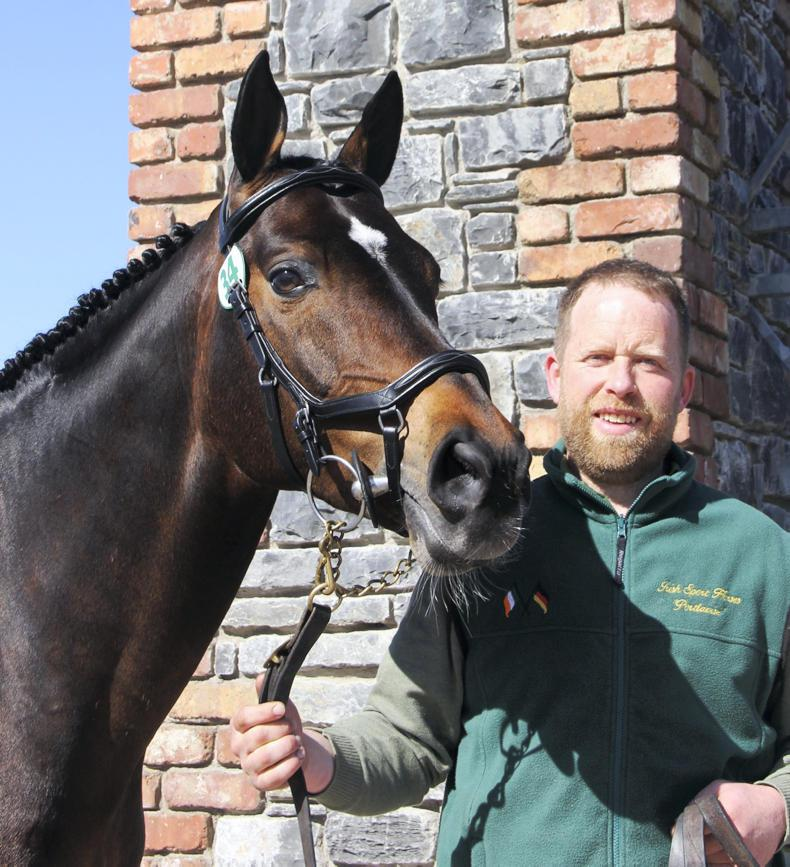 STALLIONS 2017: Further expansion at Hazel Arch Farm