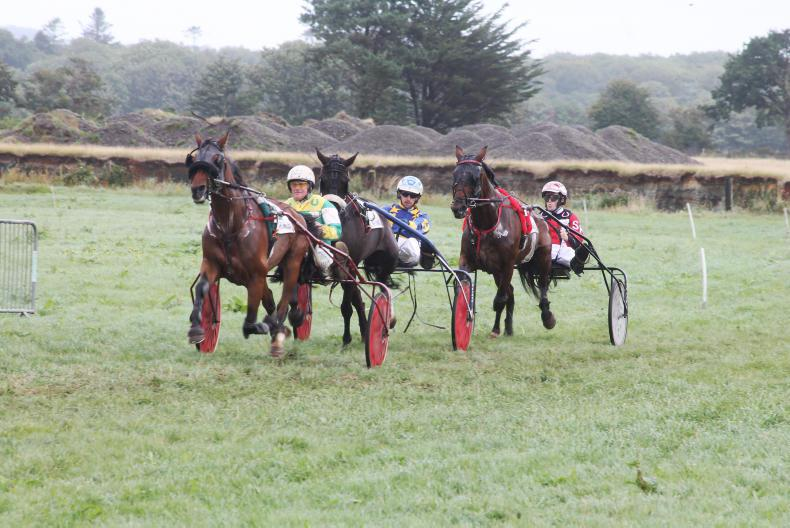 HARNESS RACING: Donovan gesture brings cheers for Cork