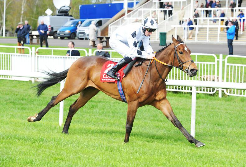 PEDIGREE NOTES: Another Group 1 winner for Iffraaj