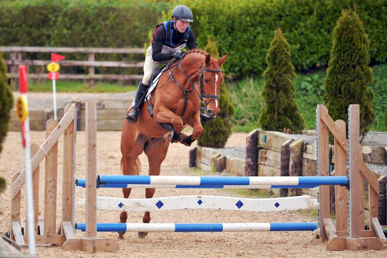 EVENTING: Alderson makes an impression