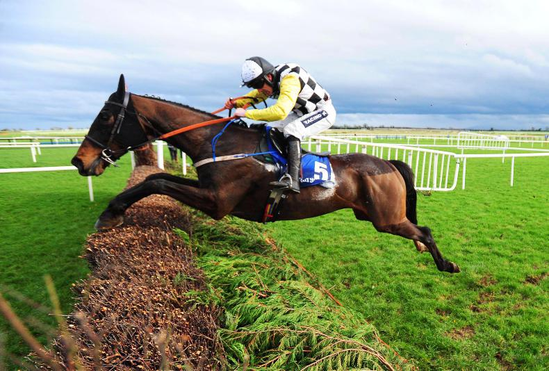GRAND NATIONAL TIPS 2017: Lion stronger for second bid