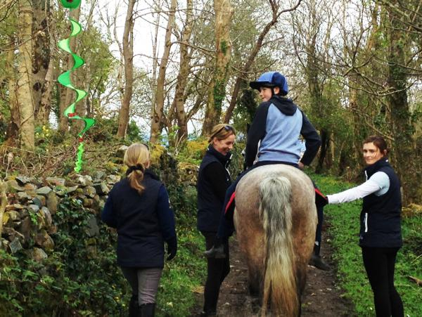 Connemara ponies offer therapy