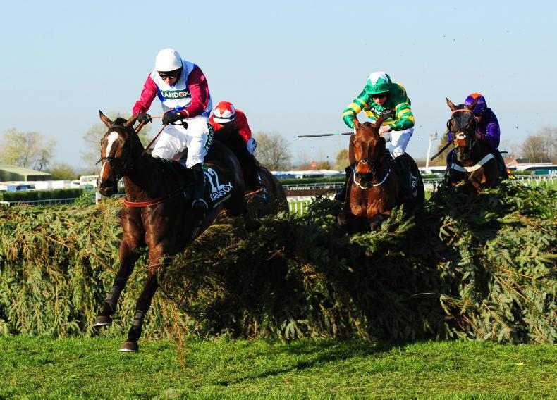 EOGHAIN WARD: Aintree victories back-up incredible year at the sales