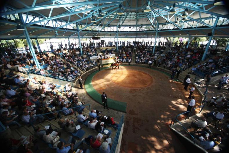 AUSTRALIA: Fastnet Rock mare takes top spot