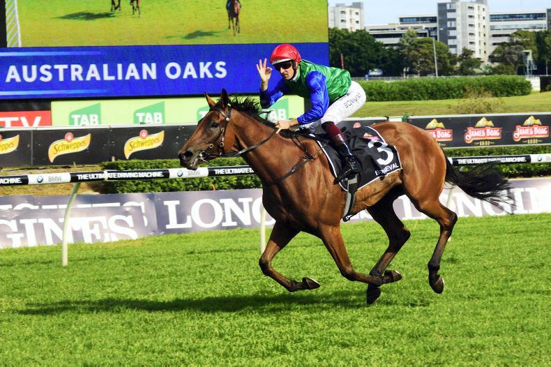 AUSTRALIA:  A Bonne Oaks success